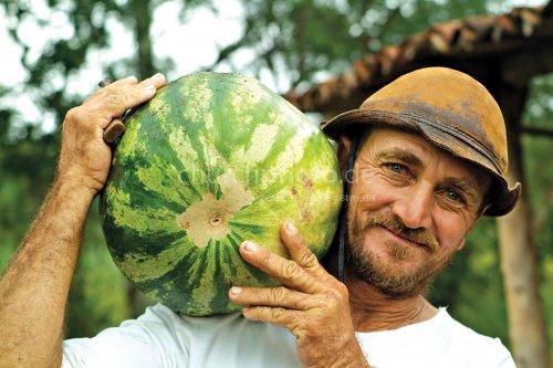 ADRA Brazil, watermelon