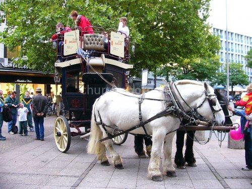 Horsedrawn coach