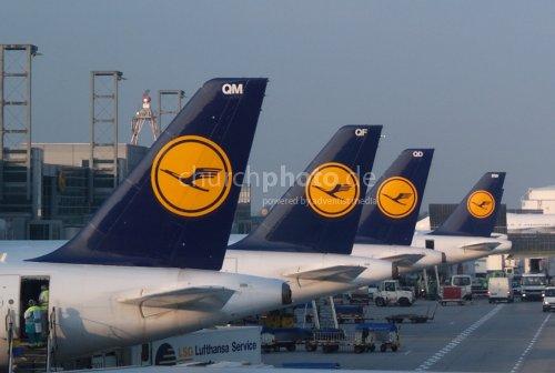 Lufthansa fleet