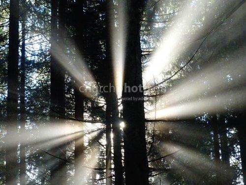 Sonnenstrahlen  -  sunbeams