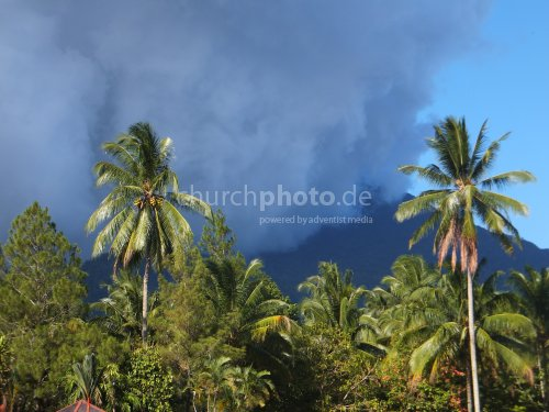 Palmen und Wolken - palm trees and clouds
