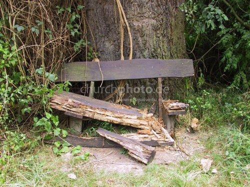 Rotten bench