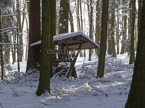 Manger in the woods