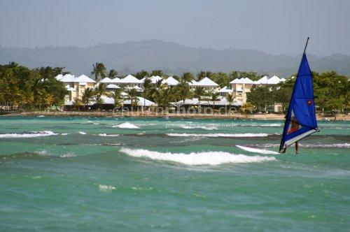 Caribbean surfer