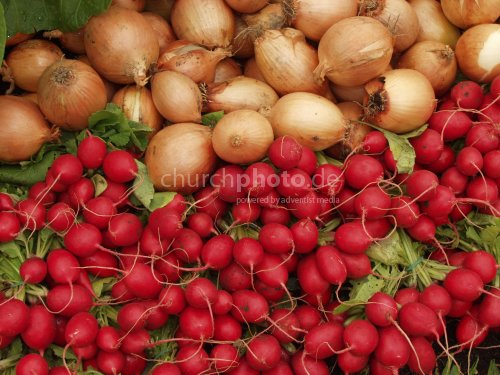 onion radishes