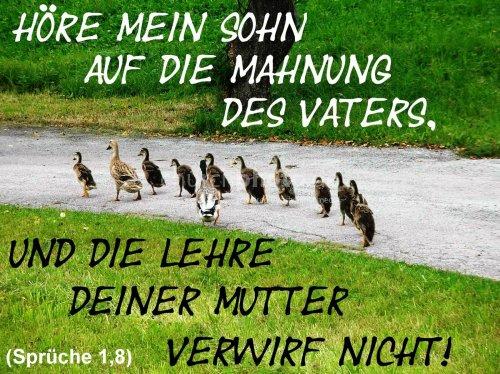 Sprüche 1,8
