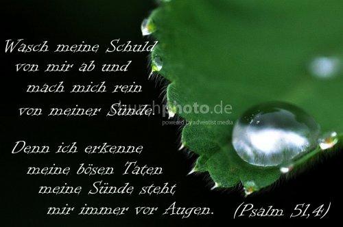 Psalm 51,4