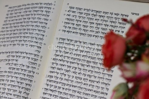 Hebrew Bible Text (OT)