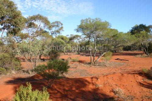 Australia's Red Earth