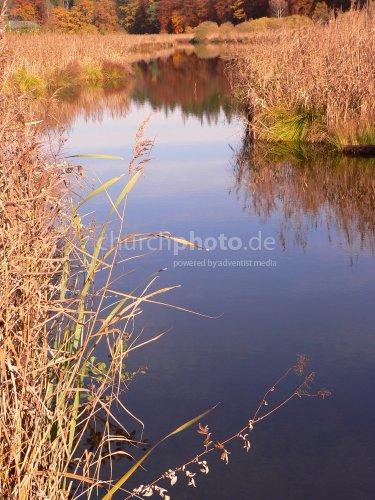 Zufluss zum Moor