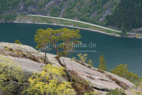 Hoch über dem Fjord