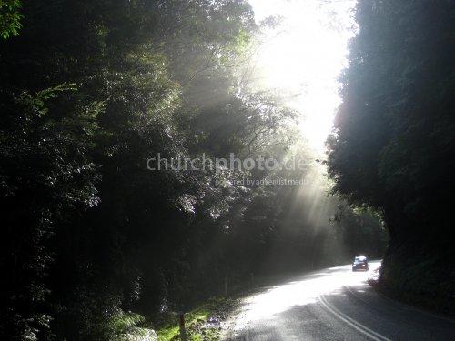 Sonnenstrahlen - sun rays