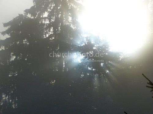 Durch die Nebelschicht dingende Sonne