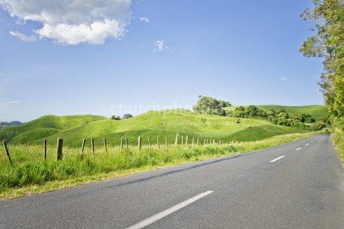 Straße mit saftigen Wiesen