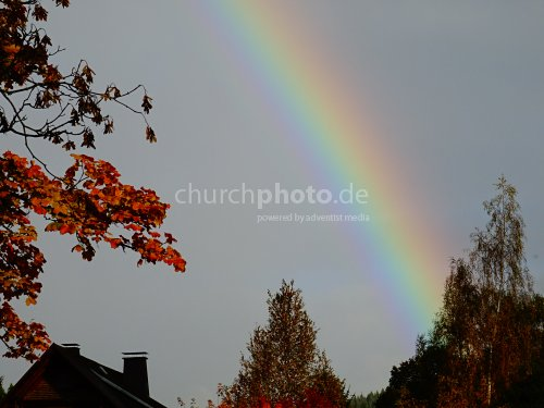 Regenbogen - rainbow