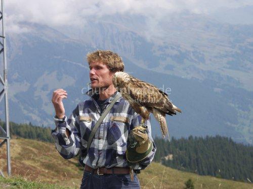 Eaglebuzzard with trainer
