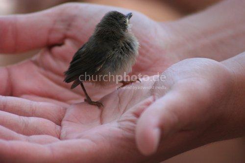 In his hands...