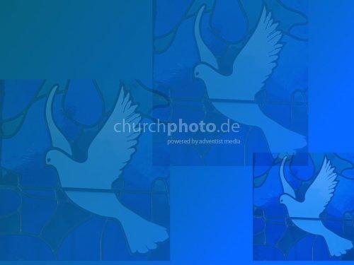 Dove_3
