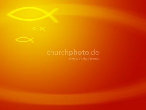 Fish in orange 3