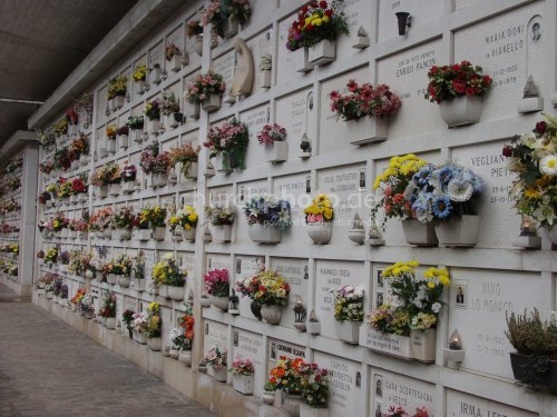 cemetry wall with flowers