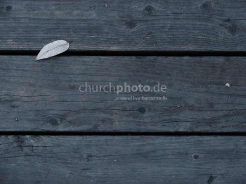 Dark Wooden Boards
