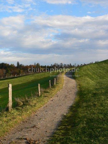 Spazierweg im Herbst