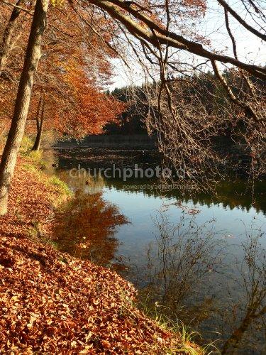 Herbstliches Ufer