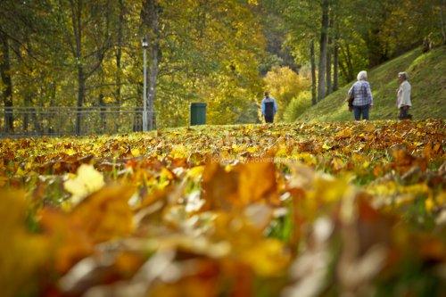 Menschen im Herbst