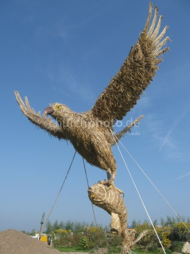 Stroh-Adler mit Fisch