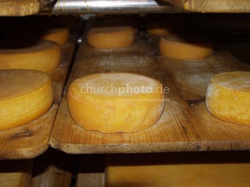 Cheese storeroom