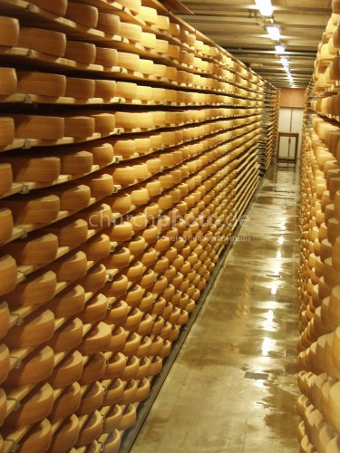 storeroom for cheese