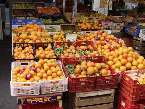 fruit market with oranges